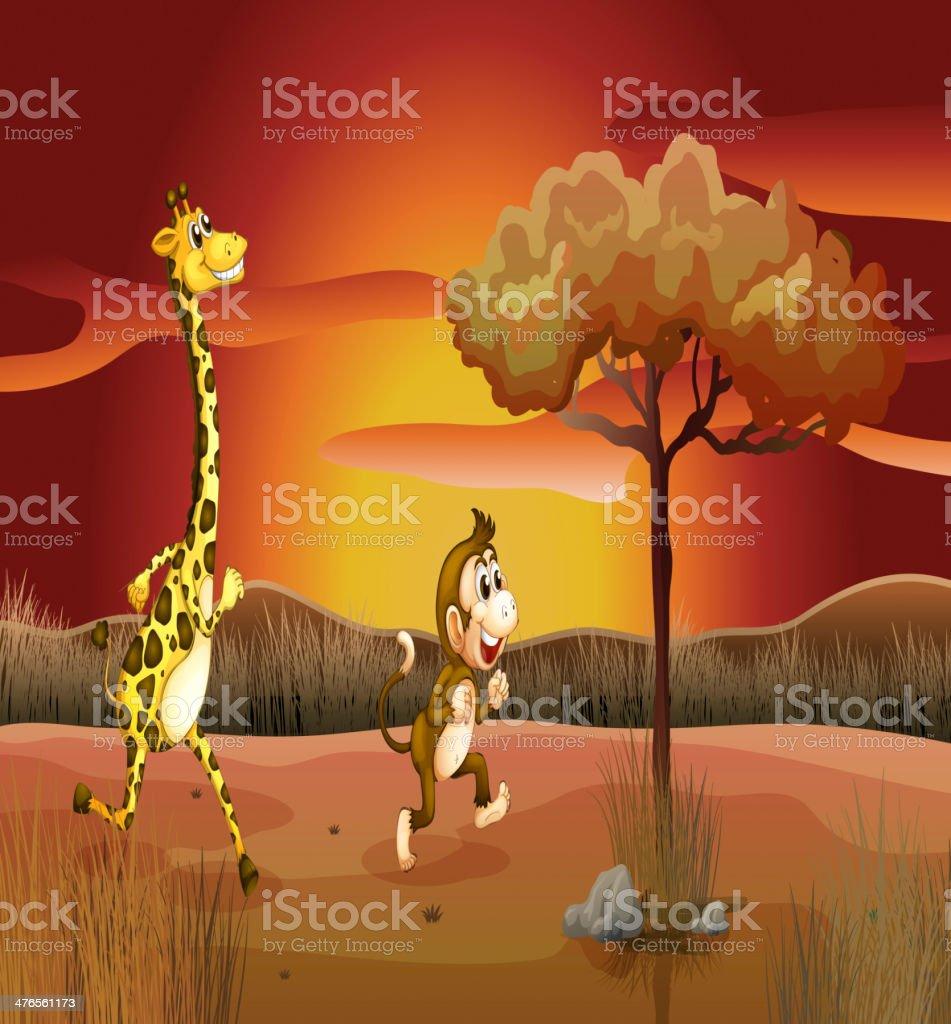 giraffe and monkey running in a sunset scenery