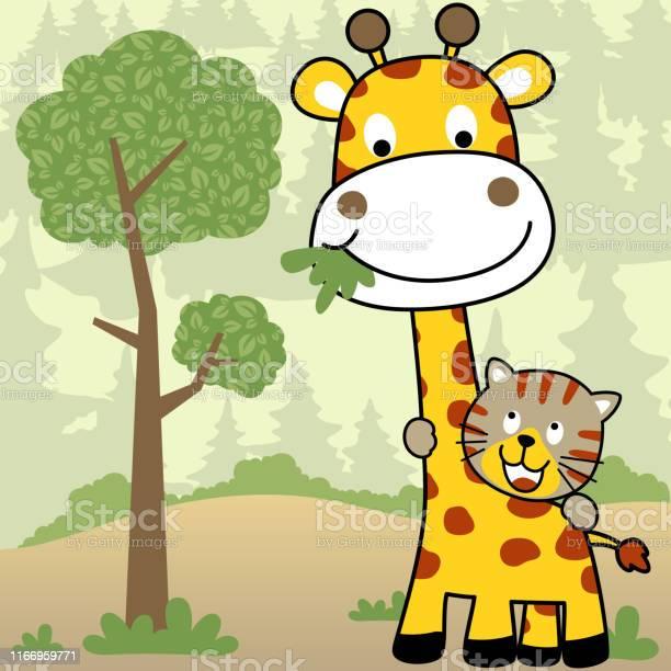 Giraffe and tiger cartoon in jungle vector id1166959771?b=1&k=6&m=1166959771&s=612x612&h=ullb5z3dramqqhdmdmpop3rlq2zgpd ocwgds5ab0m4=