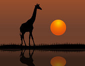 Vector of Giraffe at Sunset Background. EPS Ai 10 file format.