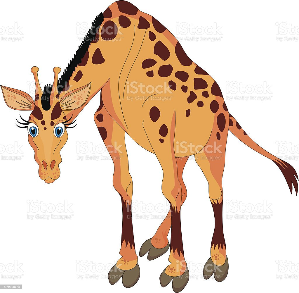 Girafe dessin animé vector illustration girafe dessin animé vector illustration – cliparts vectoriels et plus d'images de afrique libre de droits