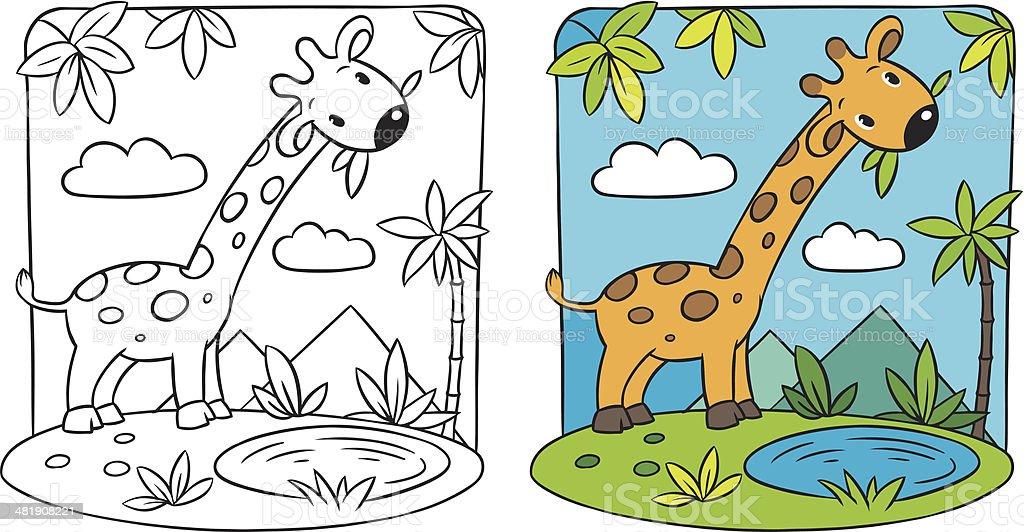 Giraffe. Coloring book vector art illustration