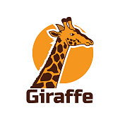 Giraffe icon isolated on white background, vector illustration