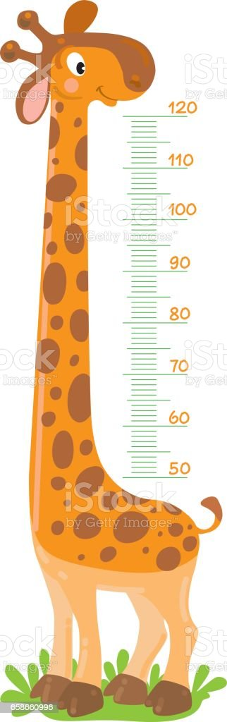 Giraffe meter wall or height chart vector art illustration