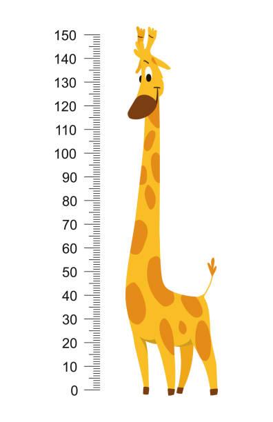 giraffe meterwand oder höhendiagramm-vektorabbildung - messlatte stock-grafiken, -clipart, -cartoons und -symbole