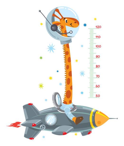 stockillustraties, clipart, cartoons en iconen met giraffe op raket. meter muur of hoogte grafiek - lang lengte