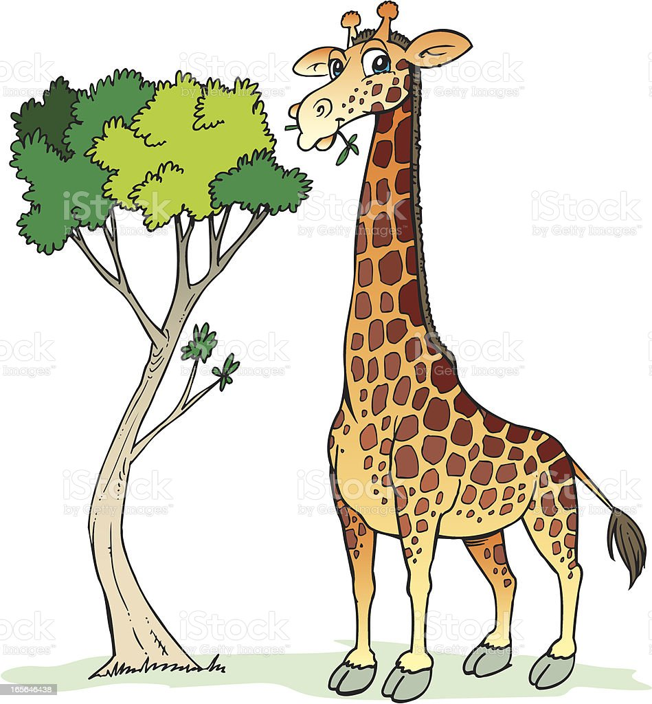 giraffe stock vector art more images of animal 165646438 istock rh istockphoto com giraffe vector free download giraffe vector free