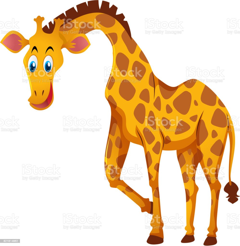 royalty free giraffe clipart images pictures clip art vector images rh istockphoto com baby giraffe clipart images