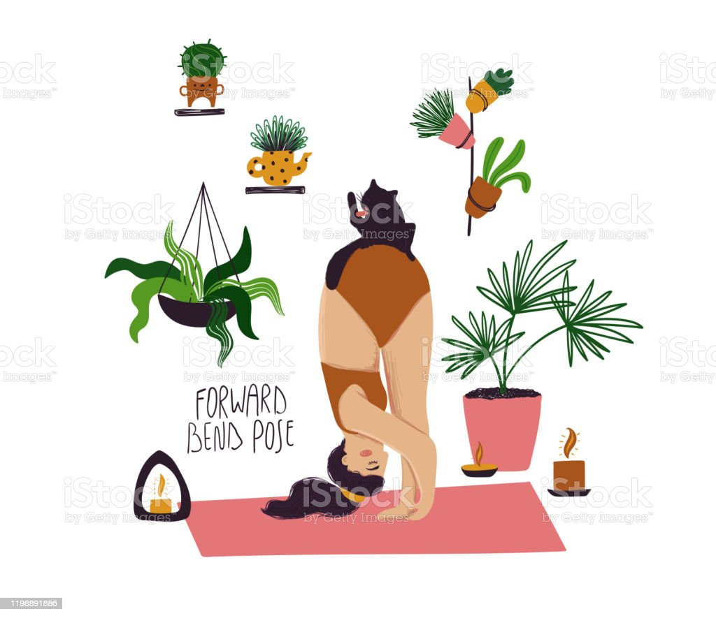 Girl Doing Forward Bend Yoga Pose With Cat Stock Illustration Download Image Now Istock