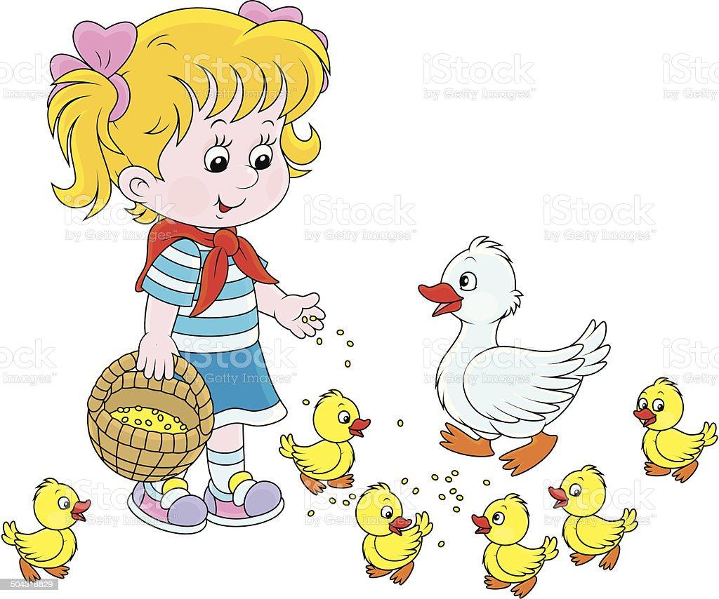 Girl feeding ducklings royalty-free stock vector art