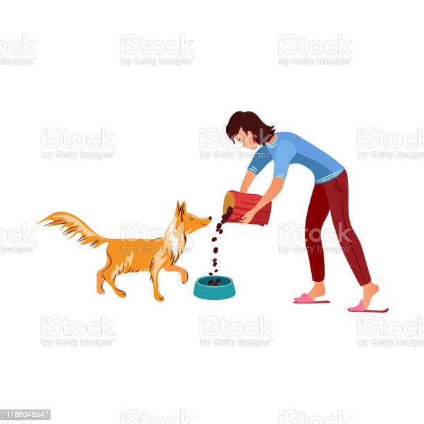 Girl feeding her red collie dog vector illustration vector id1188048547?b=1&k=6&m=1188048547&s=612x612&h=hor0z5r1j3x2qziw7qoazka8gdfr7w0zqyi6xpjmy m=