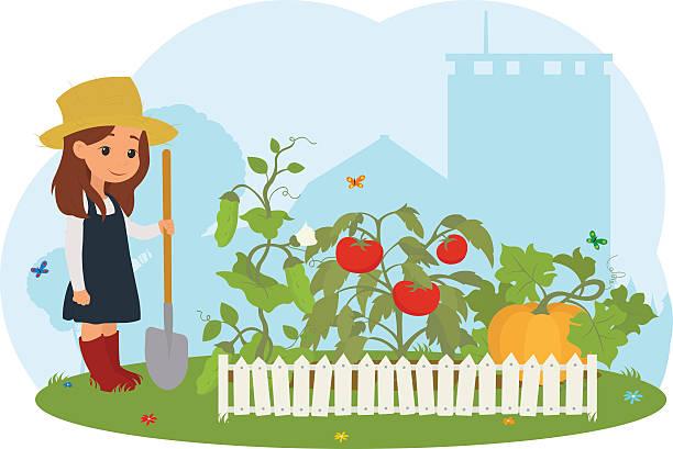 ilustrações, clipart, desenhos animados e ícones de garota na fazenda cuidado com legumes. - horta