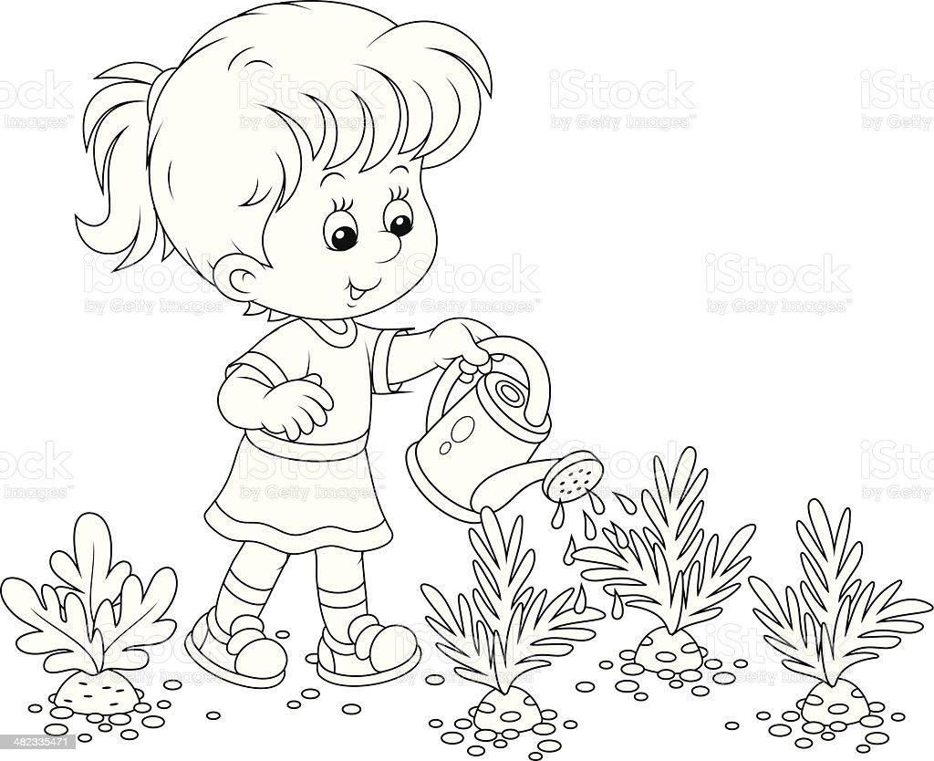 Girl Watering Carrots Stok Vektör Sanatı Bahçıvanlıknin Daha
