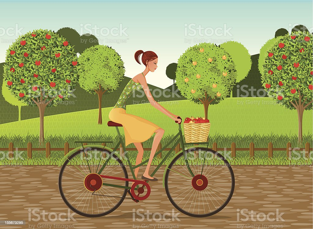 Girl with bike and apples in Countryside royalty-free girl with bike and apples in countryside stock vector art & more images of adult