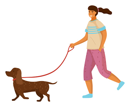 Girl with dachshund dog at leash, young pretty smiling happy cheerful female teenager with ponytail