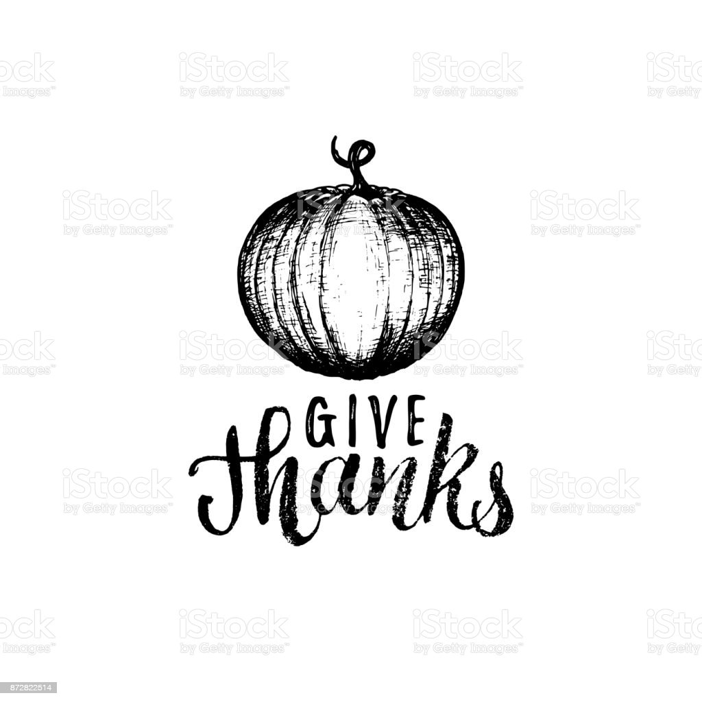 Give Thanks Vector Lettering Pumpkin Hand Sketch Illustration For