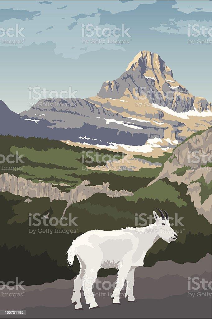 Glacier National Park with Mountain Goat vector art illustration