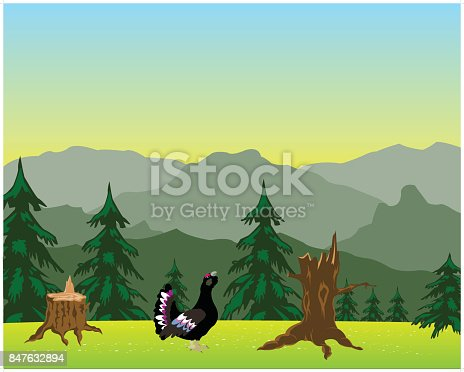 The Glade with flower in mountain high.Vector illustration
