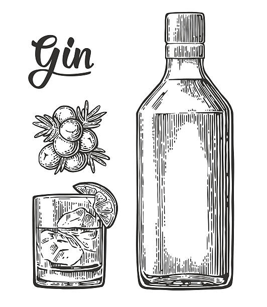 Glass and bottle of gin and branch Juniper with berries – Vektorgrafik