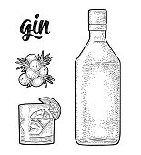 Glass and bottle of gin and branch of Juniper with berries. Vintage vector black engraving