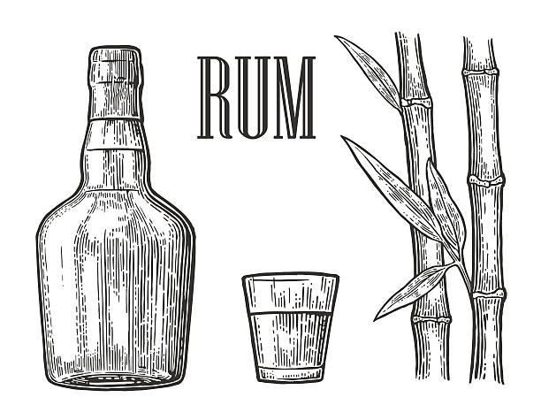 glass and bottle of rum with sugar cane. - rum stock-grafiken, -clipart, -cartoons und -symbole