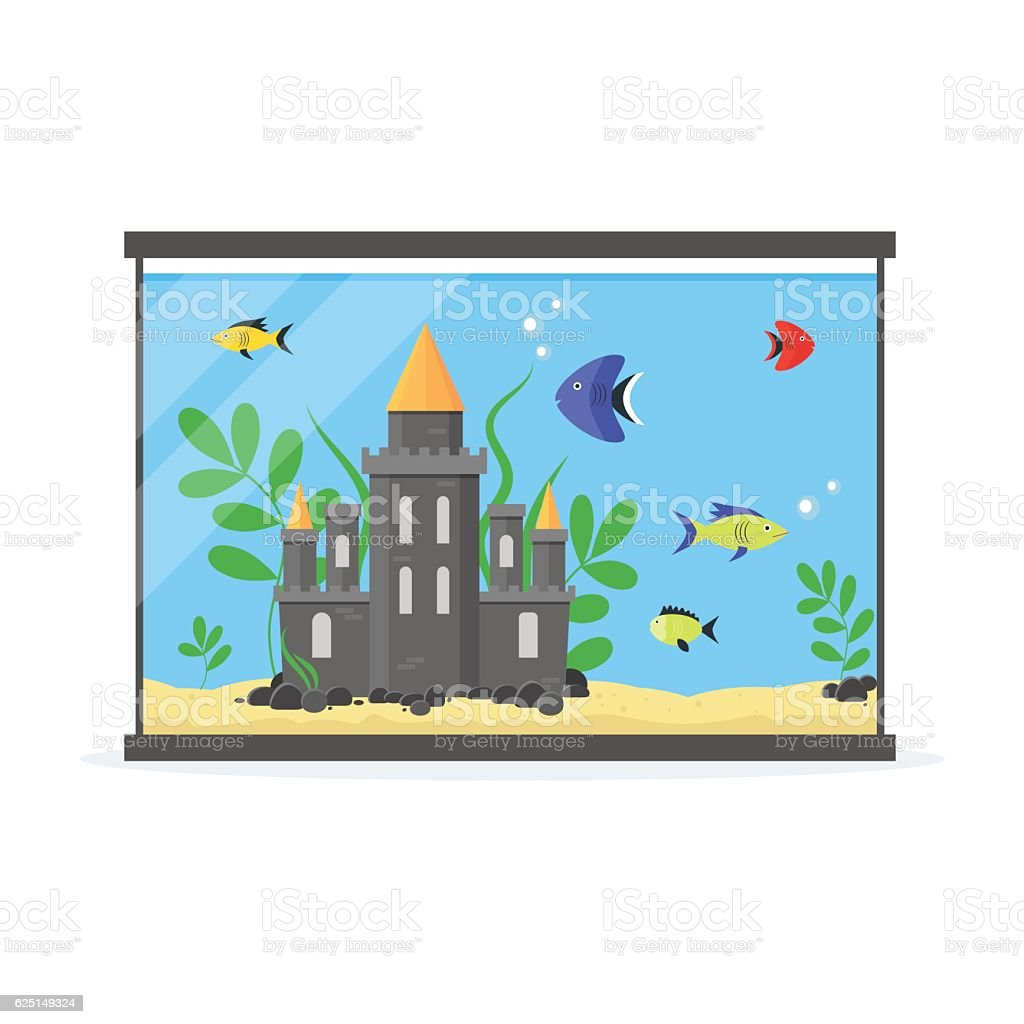 Glass Aquarium for Interior Home. Vector 벡터 아트 일러스트