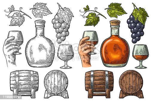 Glass, barrel and bottle of cognac. Vintage color engraving illustration for label, poster, web, invitation to party. Isolated on white background