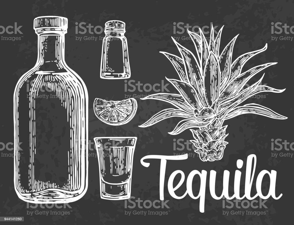 Vidrio, botlle de tequila, cactus, sal, cal - ilustración de arte vectorial