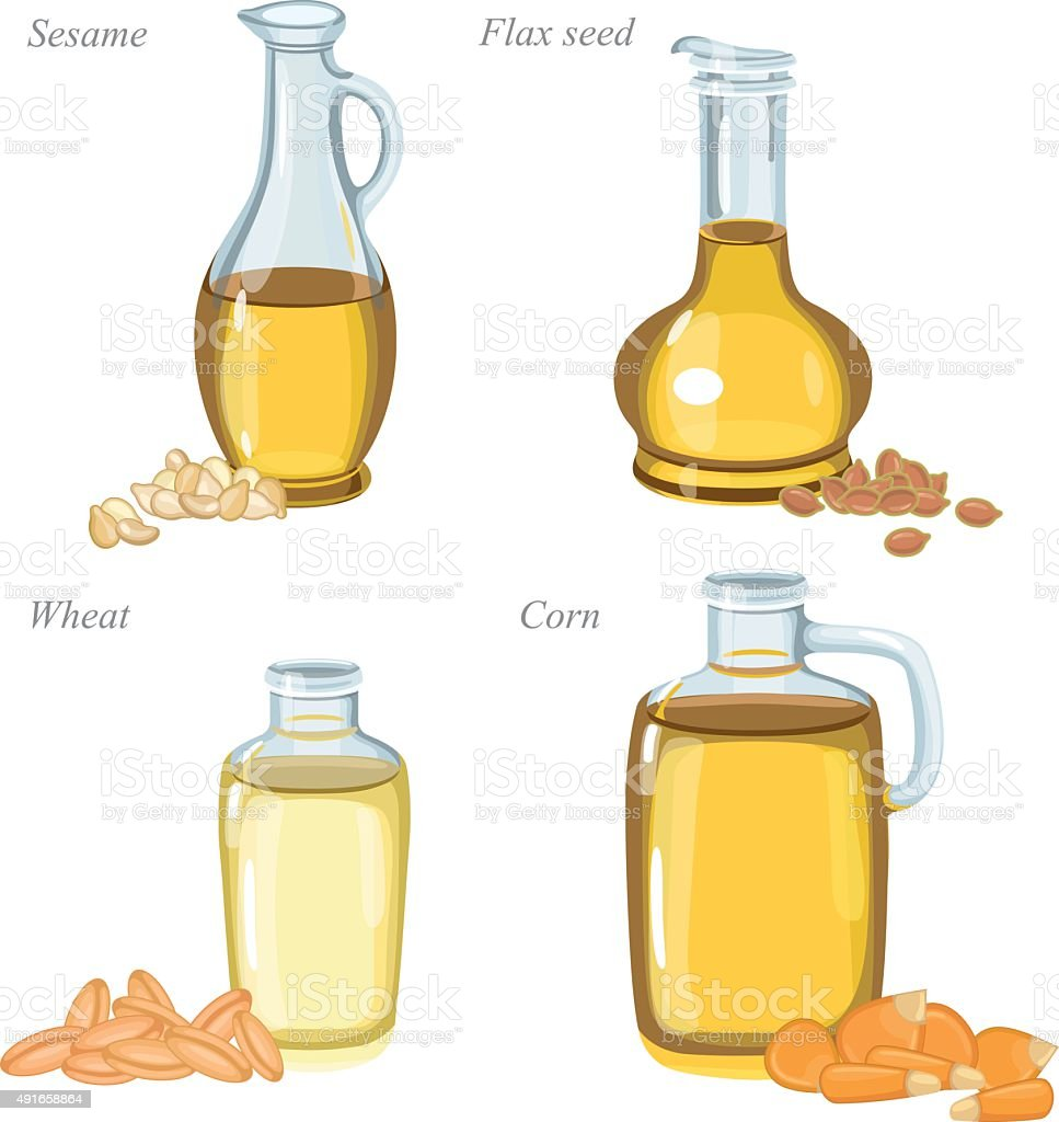 Glass bottles with oil and oilseeds in front of them vector art illustration