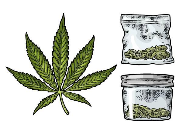glas und plastiktüte zum rauchen von cannabis. gravur - glasblumen stock-grafiken, -clipart, -cartoons und -symbole