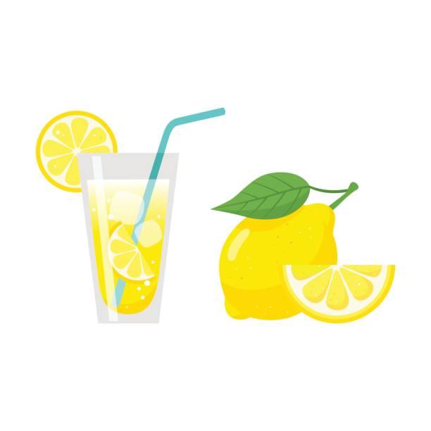 빨 대, 레몬 슬라이스, 신선한 레몬 과일와 레몬 주스의 유리 - 레모네이드 stock illustrations