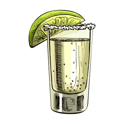 Glass tequila with slice lime. Vector vintage hatching