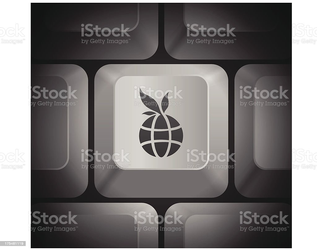 Globe Icon on Computer Keyboard royalty-free stock vector art