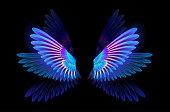 Glowing hummingbird wings