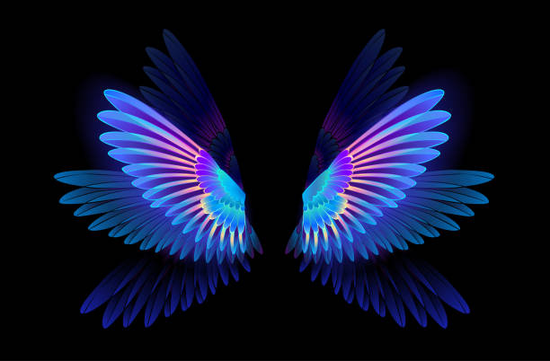 Glowing hummingbird wings Transparent, luminous, blue, iridescent hummingbird wings on dark background. flapping wings stock illustrations