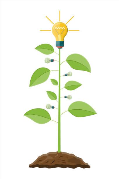 Incandescent ampoule sur l'arbre avec des feuilles vertes. - Illustration vectorielle