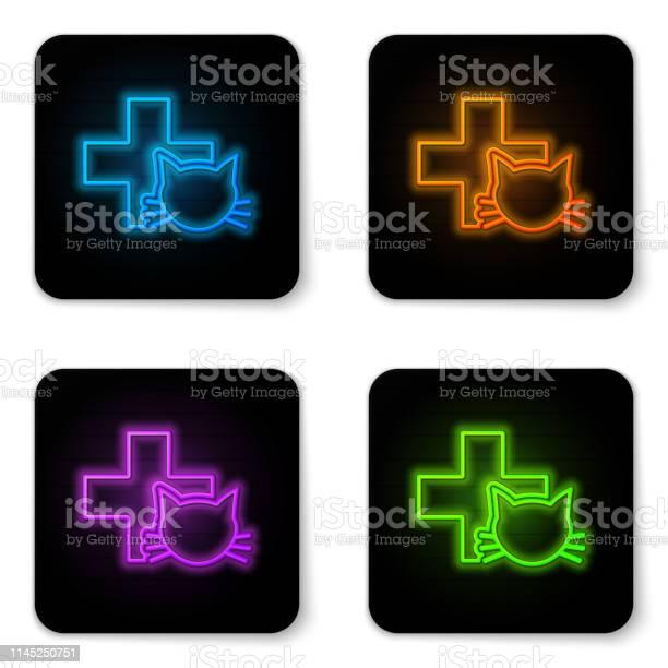 Glowing neon veterinary clinic symbol icon isolated on white cross vector id1145250751?b=1&k=6&m=1145250751&s=612x612&h=gegk6aku3wwznqfa3qb9ou6 sbukdpgisz0xtawbewg=