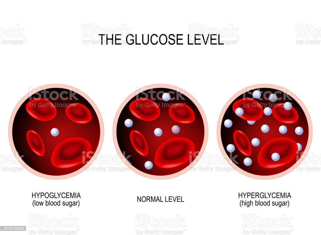 Glucose in the blood vessel. vector art illustration