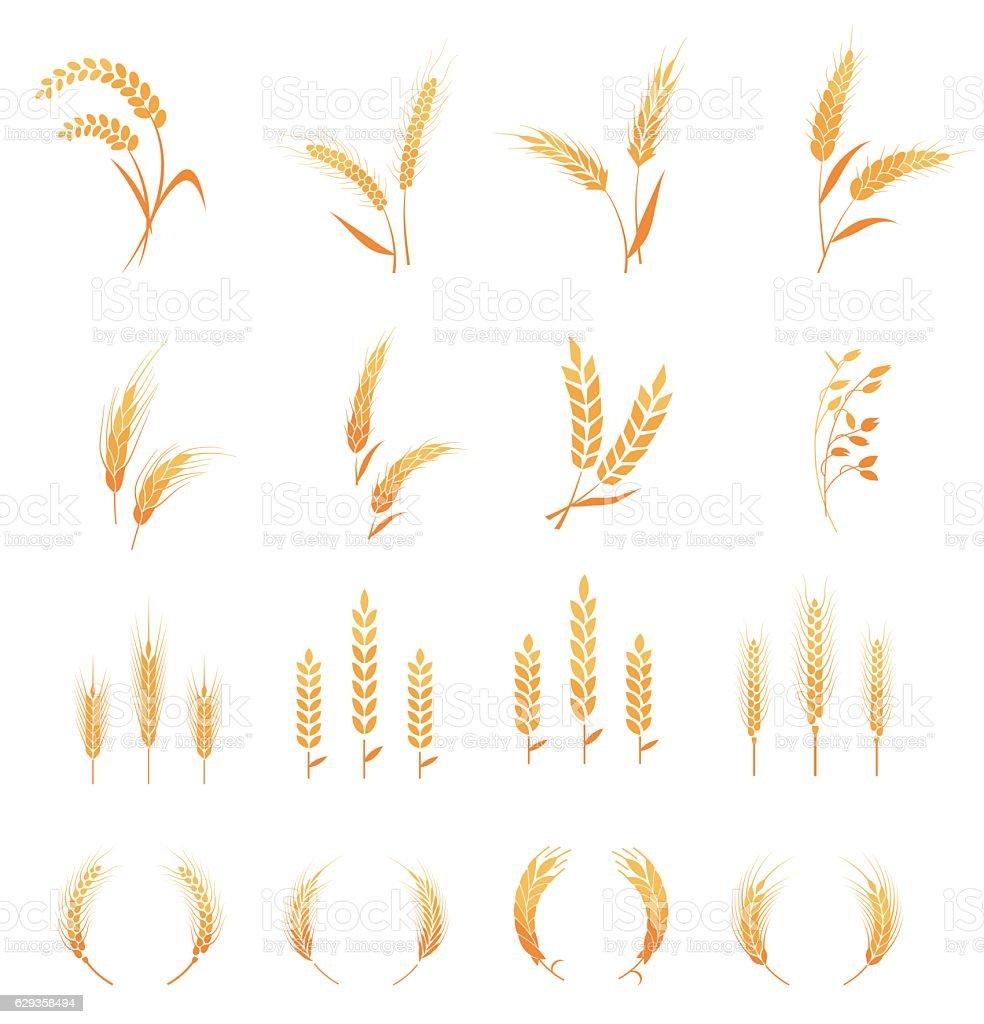 Gluten free icon. vector art illustration