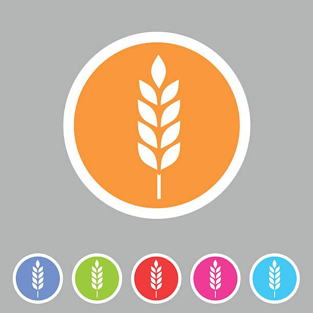 illustrations, cliparts, dessins animés et icônes de des plats sans sans gluten vecteur web icône signe symbole à étiquette - fibre
