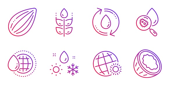 Gluten free, World water and Weather icons set. Almond nut, Water analysis and World weather signs. Vector