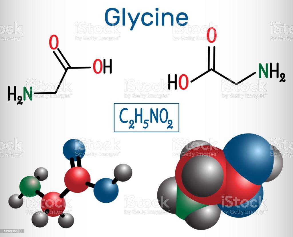 Ilustración De Glicina Es El Aminoácido Modelo De Fórmula Y La Molécula Química Estructural Y Más Vectores Libres De Derechos De Aminoácido