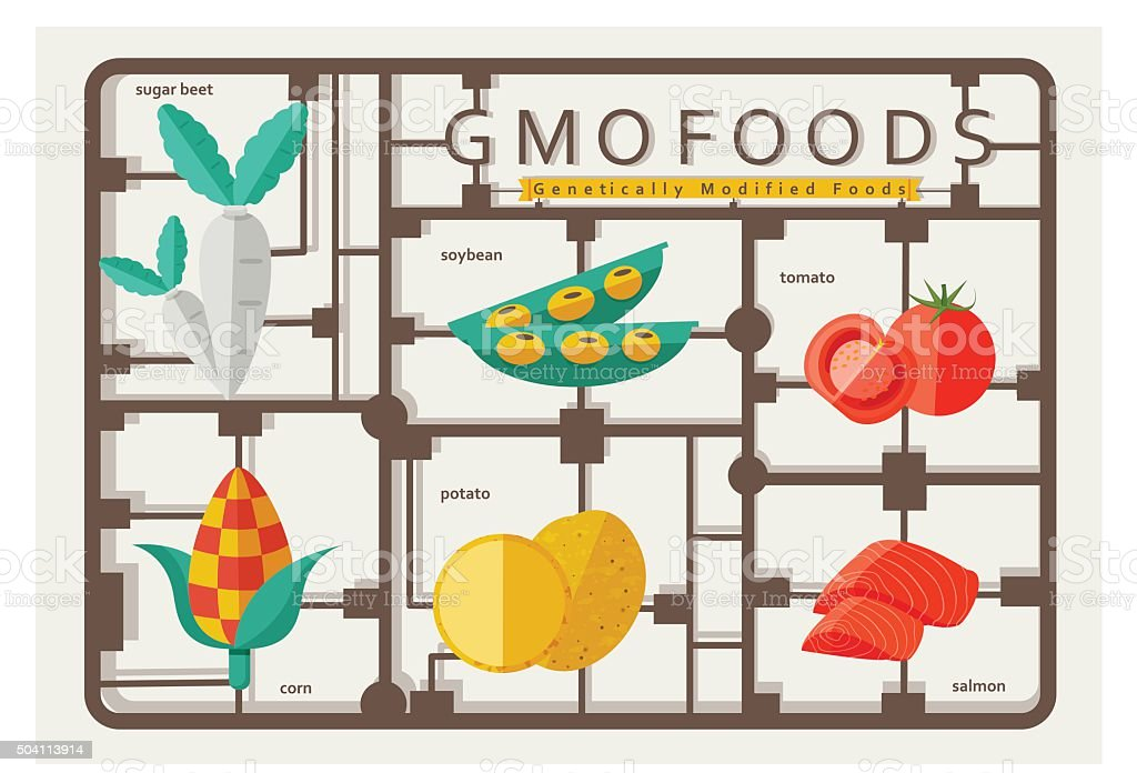 gmo foods vector art illustration
