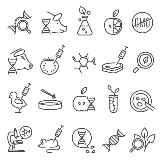 gvo-icon-set - bio lebensmittel stock-grafiken, -clipart, -cartoons und -symbole