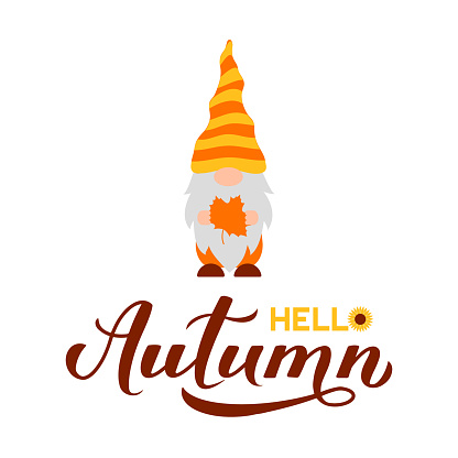 Gnome holding fall maple leaf. Hello Autumn quote lettering. Cute cartoon character. Vector template for banner, poster, greeting card, t-shirt