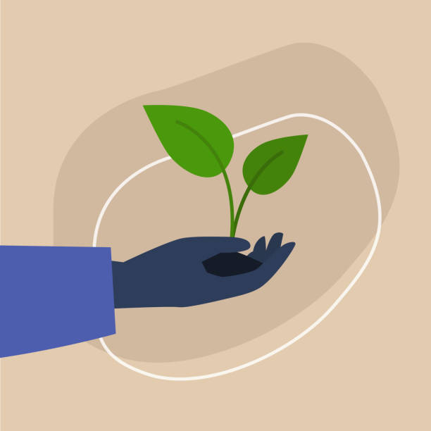 Go green, dark-skinned hand holding a plant sprout, sustainability and responsibility, eco friendly behaviour Go green, dark-skinned hand holding a plant sprout, sustainability and responsibility, eco friendly behaviour environmental issues stock illustrations