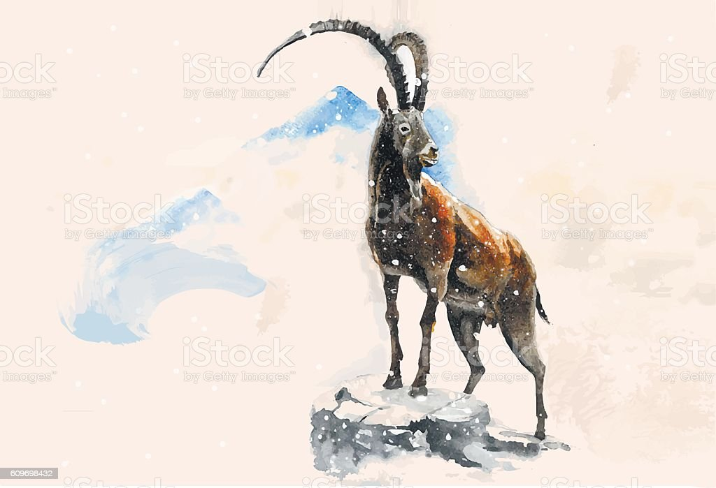 Goat in the mountains vector art illustration