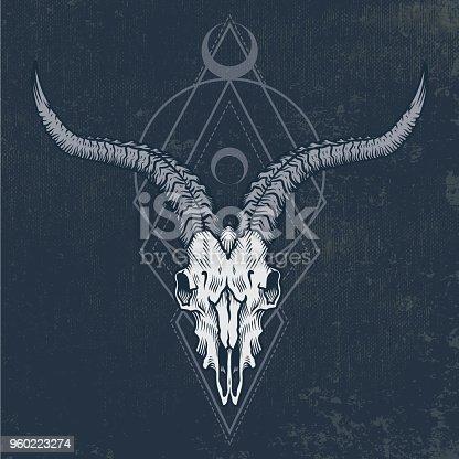 Goat skull in ink graphic technique.