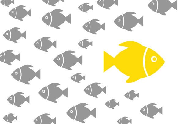 ilustrações de stock, clip art, desenhos animados e ícones de going your own way concepts - peixe