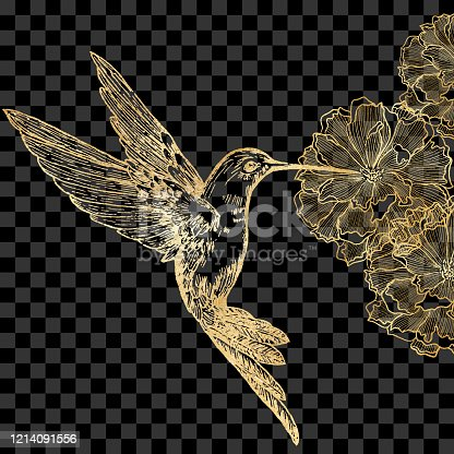 Gold Bee Hummingbird and Peonies Isolated. Hand Painted Clip Art Design Element.