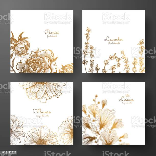 Gold collection of cards design with peonies lavender chamomile and vector id918492628?b=1&k=6&m=918492628&s=612x612&h=jyqca5us5hnh7anr1yczcp3p539covizskaxgb5z17g=